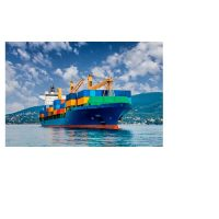 International Freight Forwarding & Shipping Company in Florida