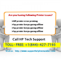 My HP Printer Not Picking up Paper to Feed- Get Solution Here